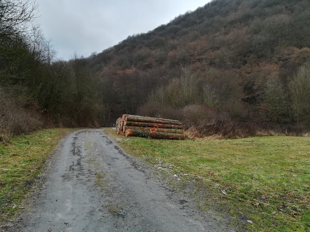 Hier wird oft Holz gelagert