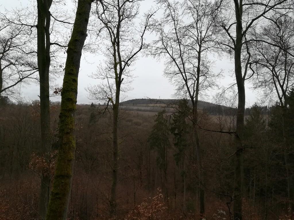 Blick auf den Grüneberg