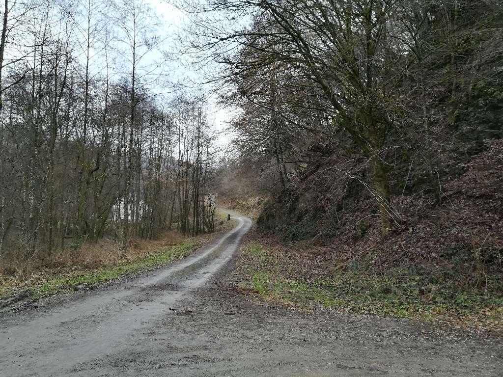 Der Weg ist halbwegs fest