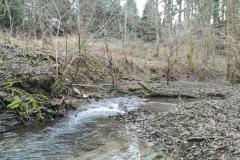 Die Riveris mündet hier in die Ruwer