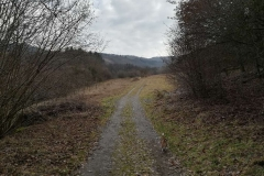 Ein Feldweg an der Riveris