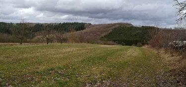 unterwegs auf Köpfchen in Mertesdorf Richtung Eitelsbach