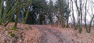 Die Naumeder Kupp oberhalb von Waldrach